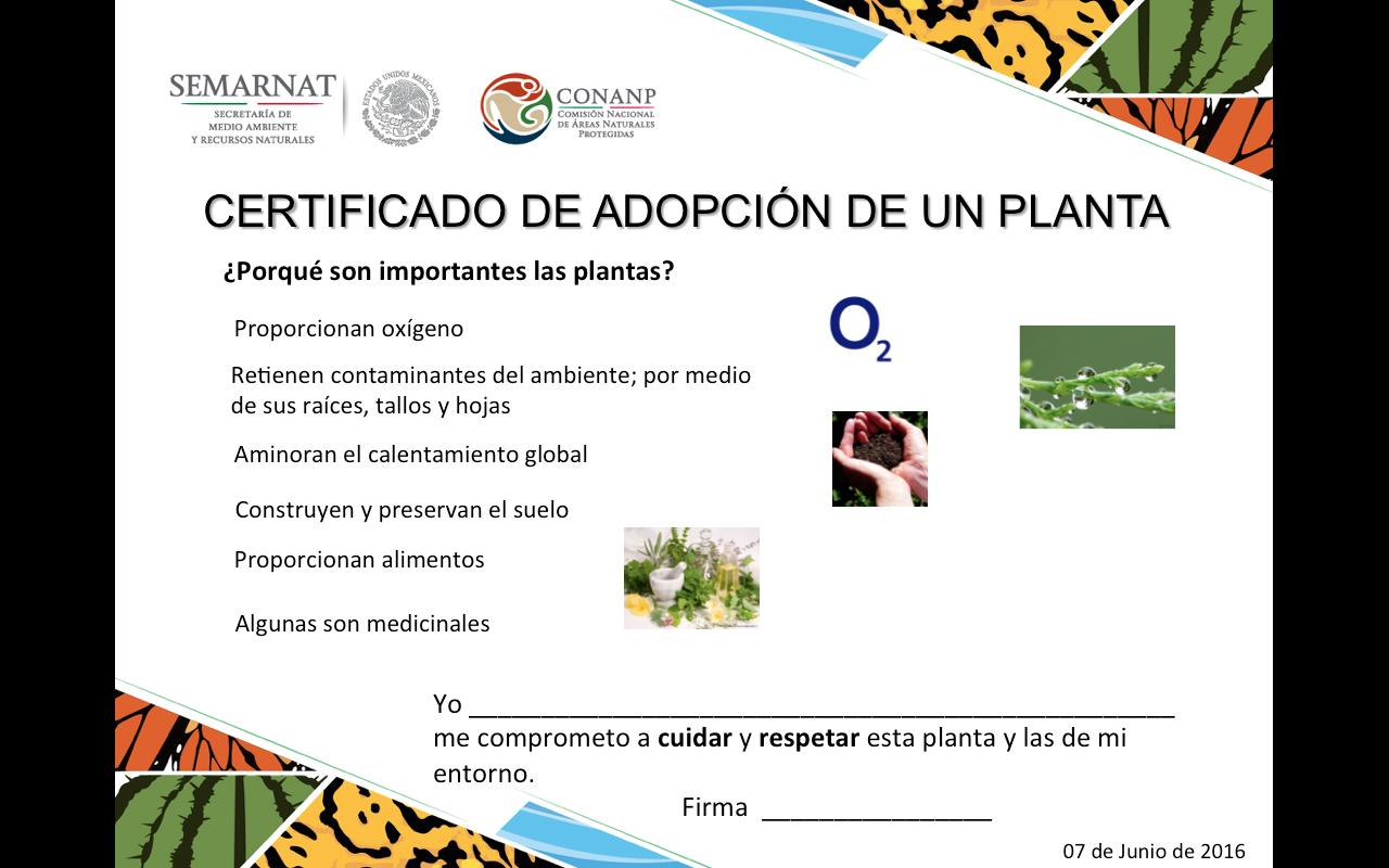 Certificado de adopción