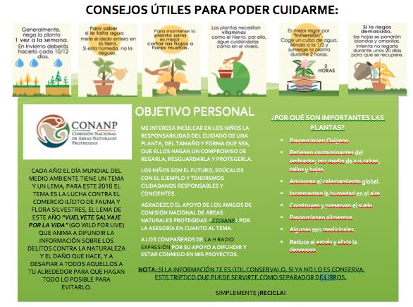 Beneficios/plantas
